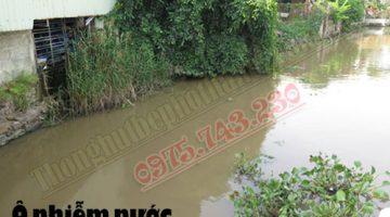 Nguyên nhân gây ô nhiễm môi trường nước & biện pháp khắc phục